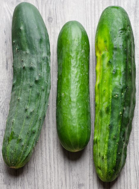 Persian cucumber in the middle, flanked by the spiny Bush Champions.